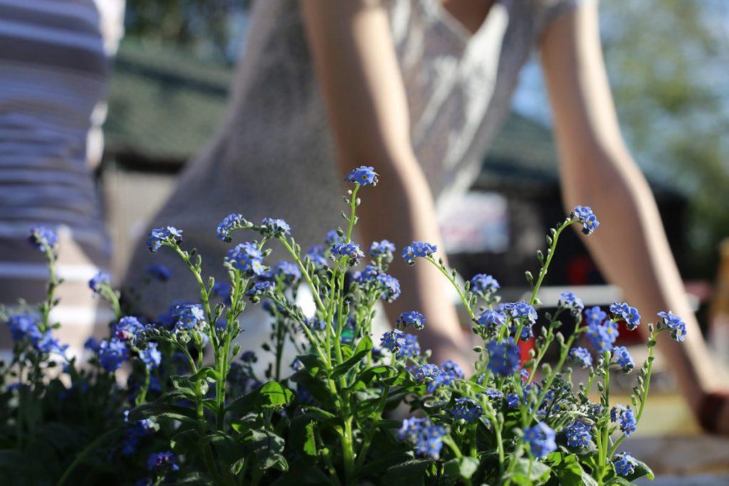 Tipps für den Garten helfen dabei, besser zu planen, den Kopf frei zu bekommen und zu entspannen.