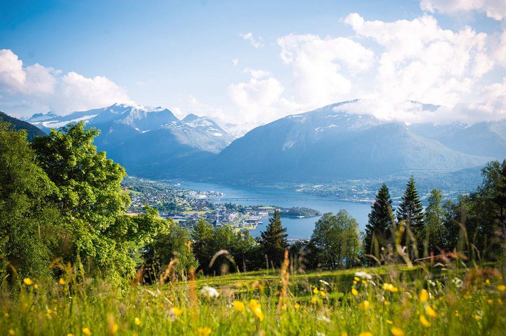 Norwegen, Fjord, Natur, Sommer