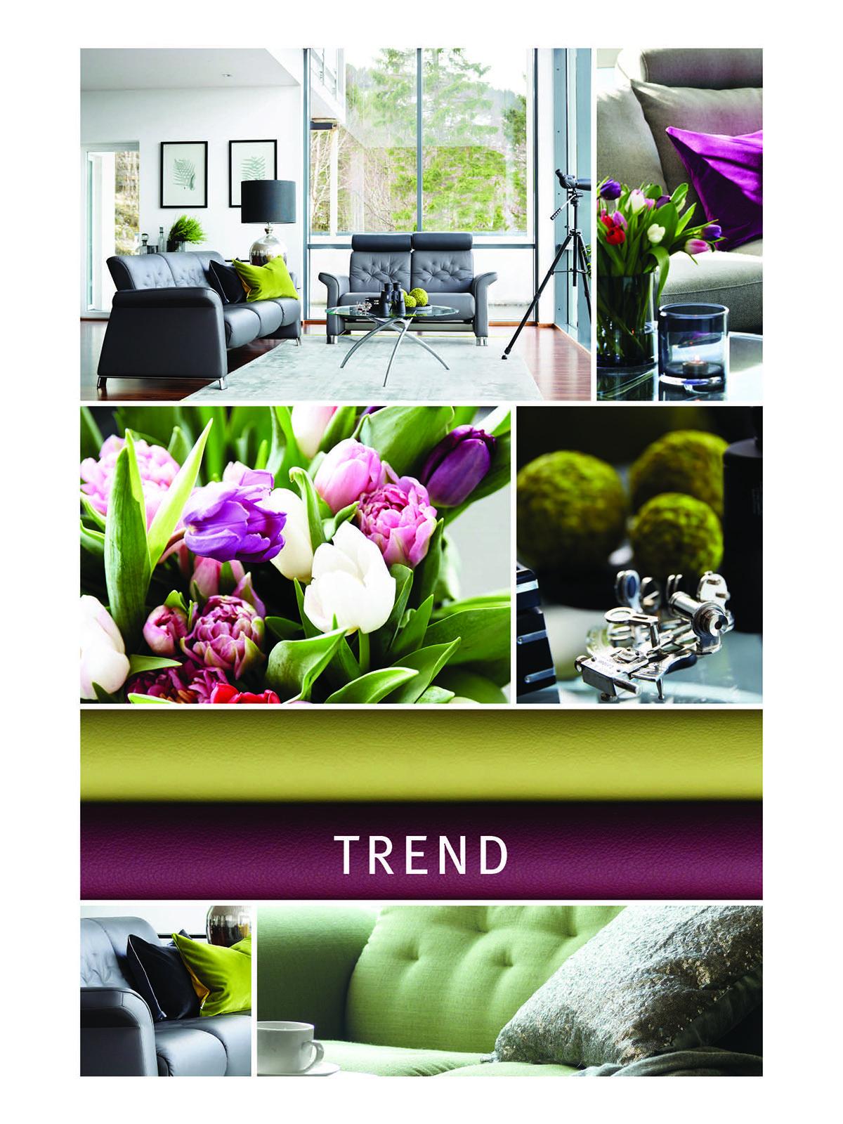 farbkombinationen trendig 2017 wohnen lila und gruen. Black Bedroom Furniture Sets. Home Design Ideas
