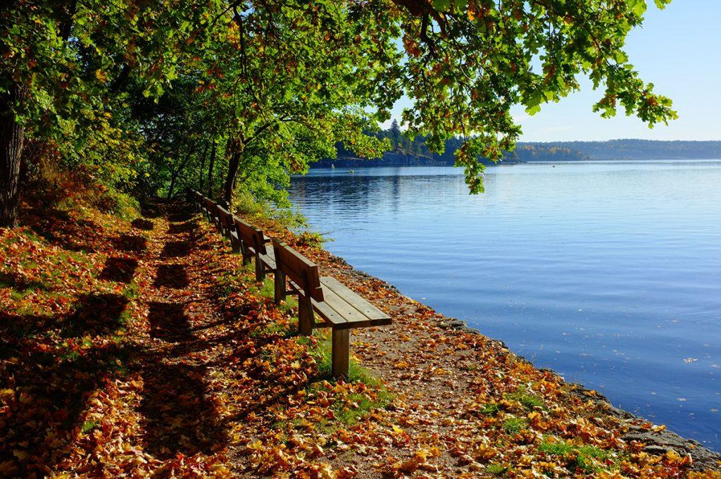 Nichtstun, Müßiggang, Entspannung, Herbstwald, See