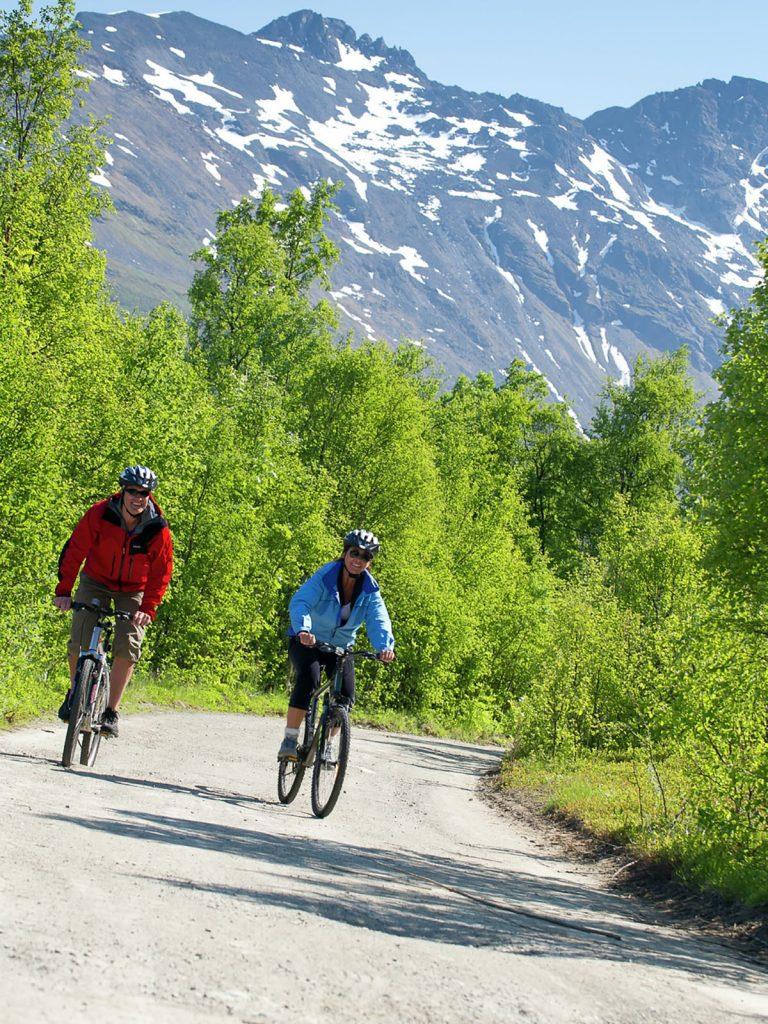 Norwegen, Mountainbiking, Sommer, Natur, Berg