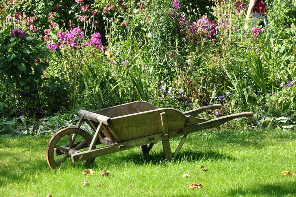 Auch Pflanzen lassen sich austricksen, wenn ihr dabei ein paar hilfreiche Tipps für den Garten berücksichtigt.