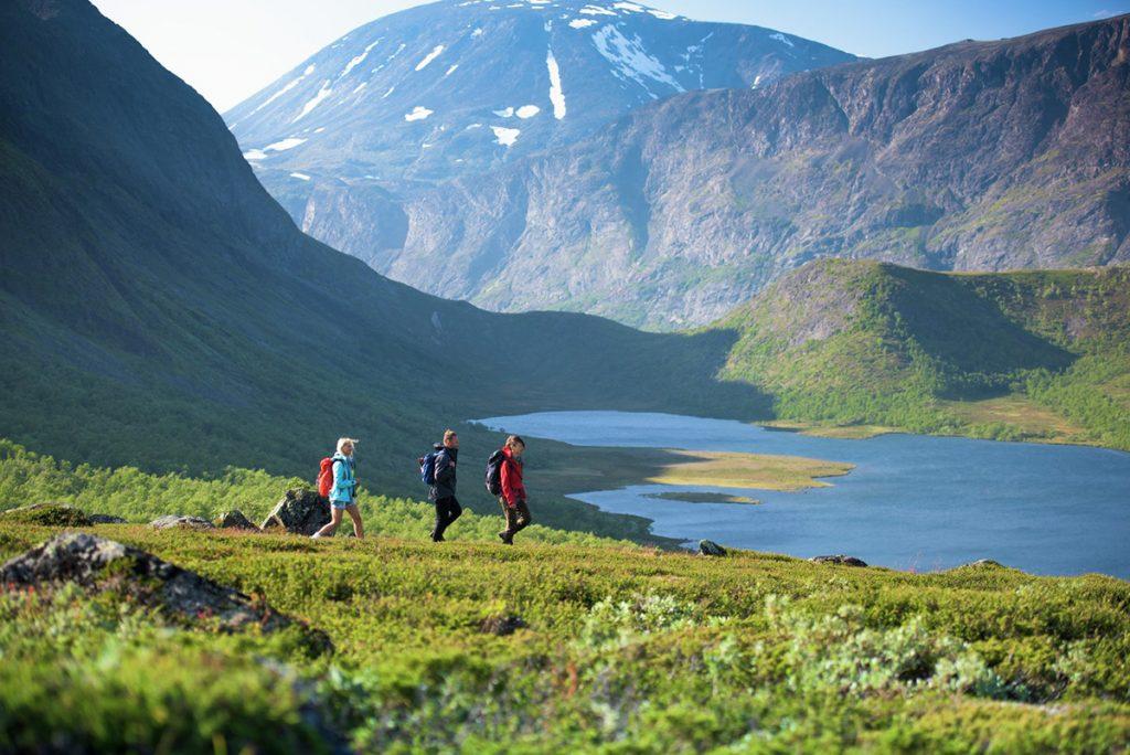 Norwegen, Wandern, Sommer, Natur, See, Wald