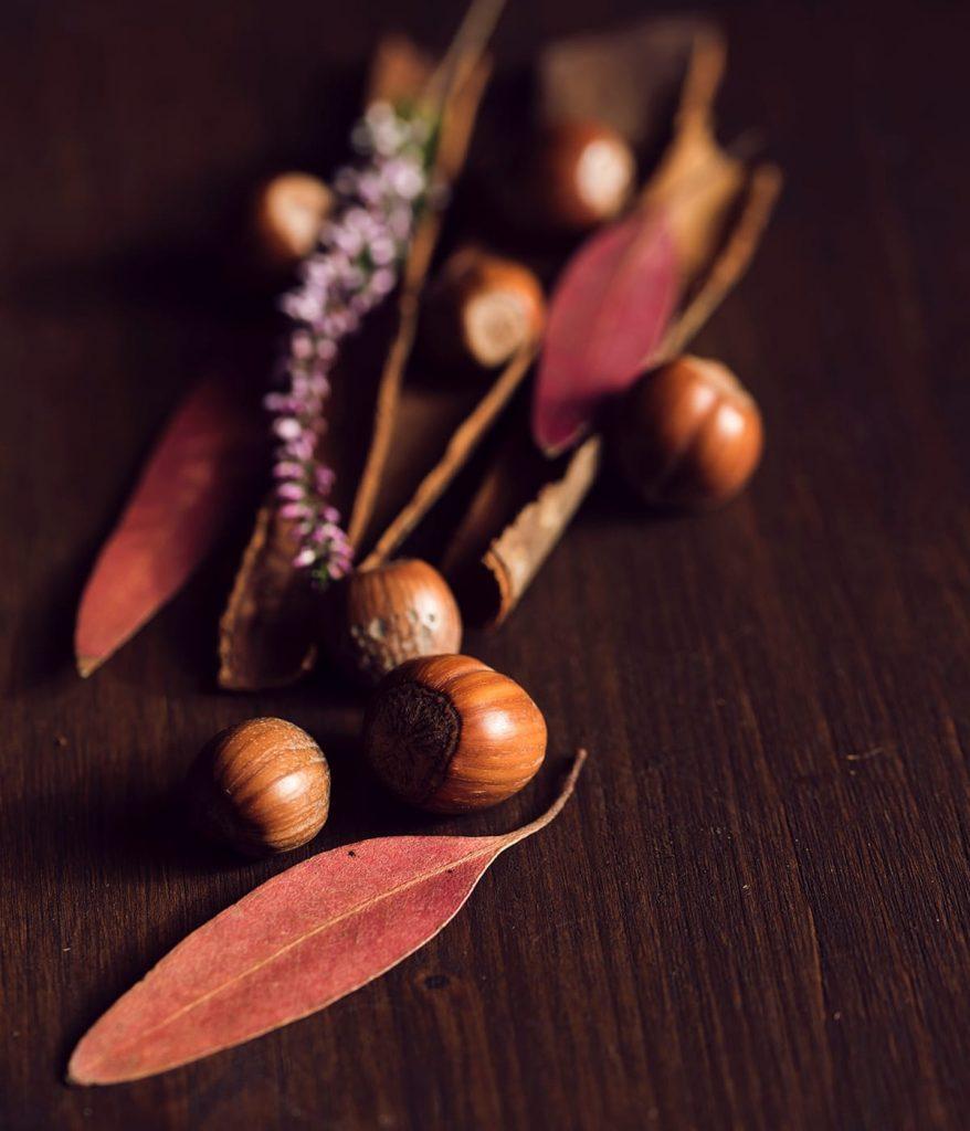 Nehmt euch bei eurem Herbstspaziergang gleich stimmungsvolle herbstliche Dekoration mit nach Hause.