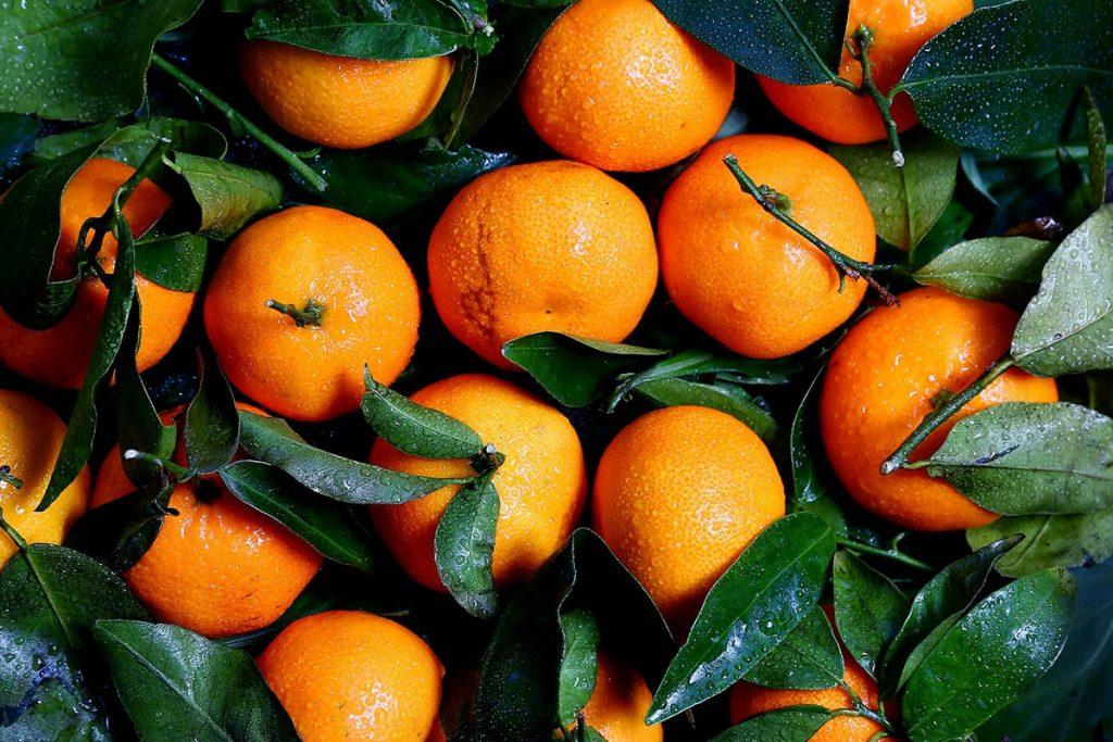 Die dunkle Jahreszeit bringt wieder leckere Orangen und Mandarinen mit sich.
