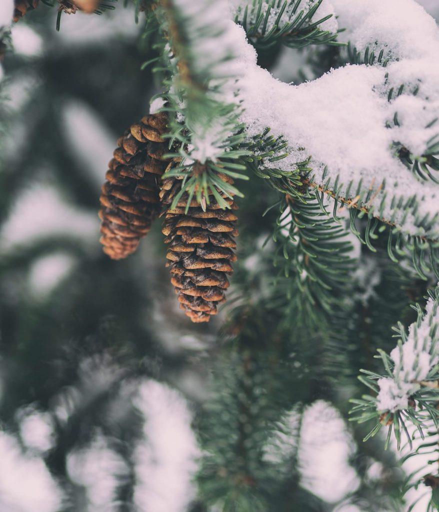 Wenn man lange draußen war, ist es schön, zurück ins Warme zu kommen und hyggelige Geschenke auszupacken.