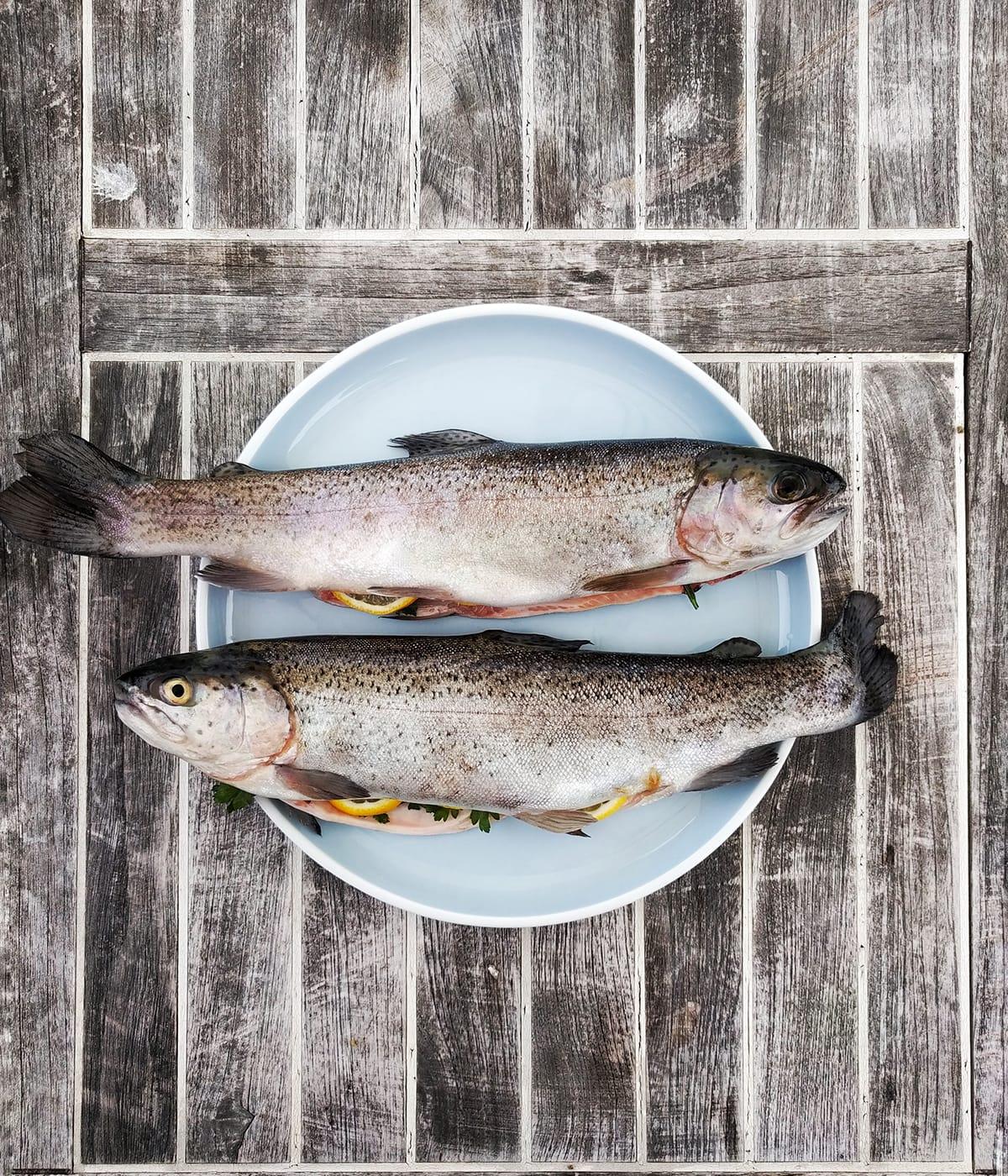 Auch die Forelle gehört zu den traditionellen norwegischen Spezialitäten.