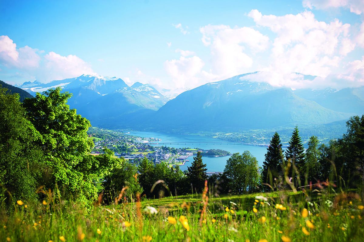 Ein idealer Ort für eine Gartenparty - die sommerliche Blumenwiese oberhalb von Sykklyven, der norwegischen Heimat von Stressless.