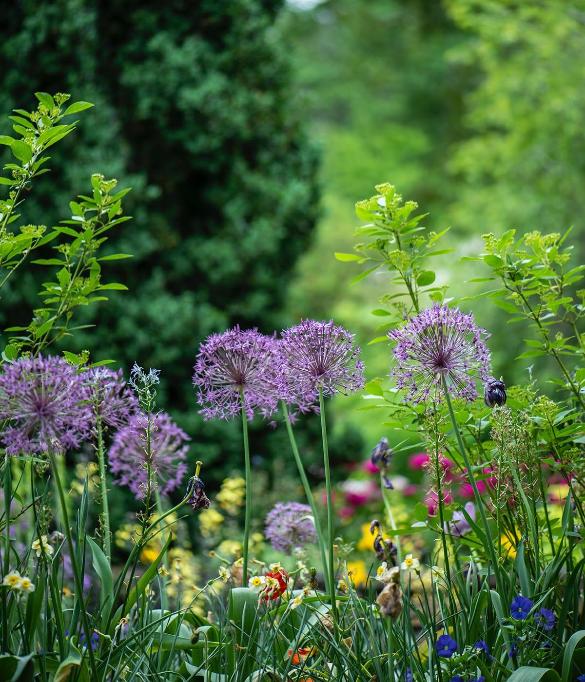 Eine Gartenparty feiert sich am schönsten im eigenen Garten.